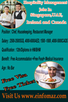 Jobs For Hospitality Management