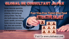 Global HR Consultant Japan