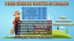 Farmworker Wanted Canada